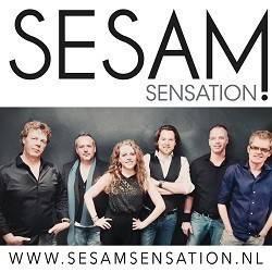 Sesam Sensation Band